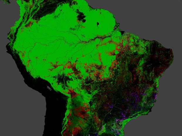 Verde representa a extensão florestal; vermelho, a perda de mata entre 200 e 2012; azul, o ganho no mesmo perído; rosa, a porção de floresta que foi desmatada e recuperada (Foto: Hansen, Potapov, Moore, Hancher et al., 2013)