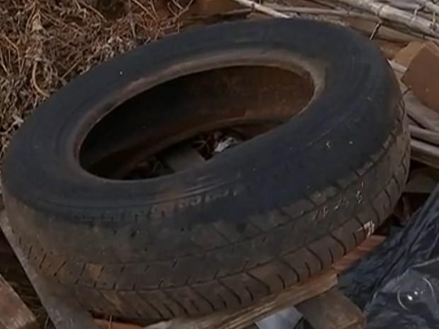 Pneus estão entre o lixo descartado em terrenos de Rio Preto (Foto: Reprodução / TV TEM)