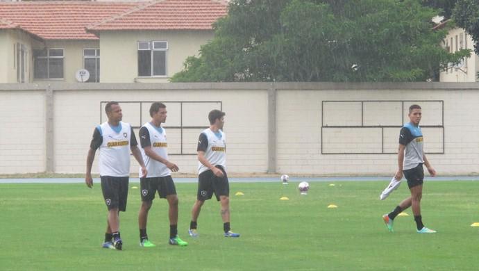 Treino Botafogo (Foto: Marcelo Baltar)