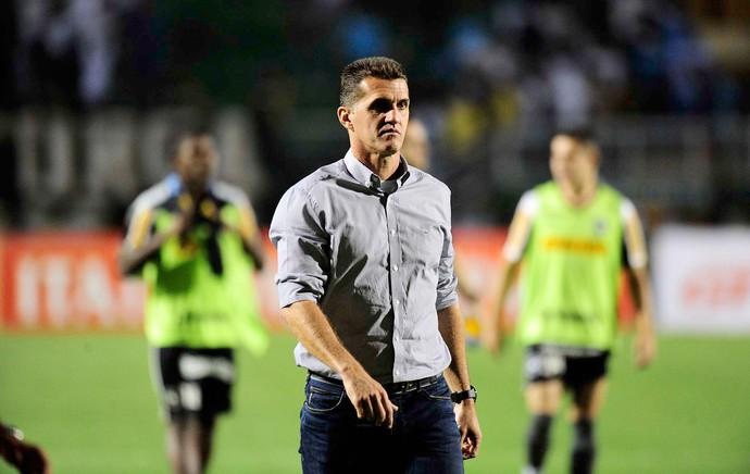 Vagner Mancini, Santos X Botafogo (Foto: Marcos Ribolli)