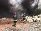 Incêndio atinge vegetação e lixo em bairro de João Pessoa