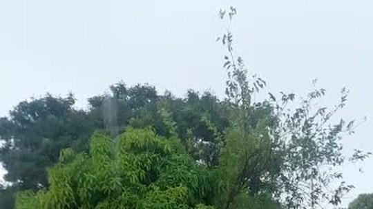 Chuva surpreende moradores do DF e até meteorologistas; veja vídeos