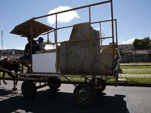 Prefeitura de Curitiba quer proibir uso de veículos com tração animal (Foto: Chico Camargo/CMC/Divulgação)