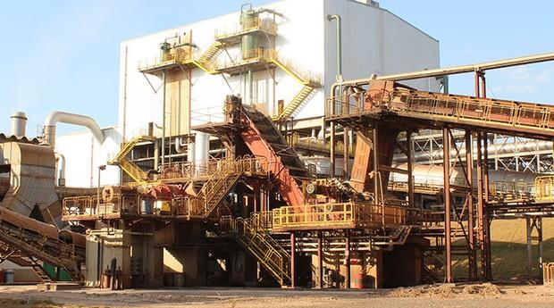 A Cargil tem 63% da Cevasa (Foto: Divulgação)