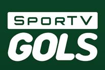 Veja os placares, lances e gols dos principais campeonatos do país (Divulgação SporTV)