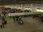 Embratur pede intervenção de aéreas após alta de preços de voos na Copa