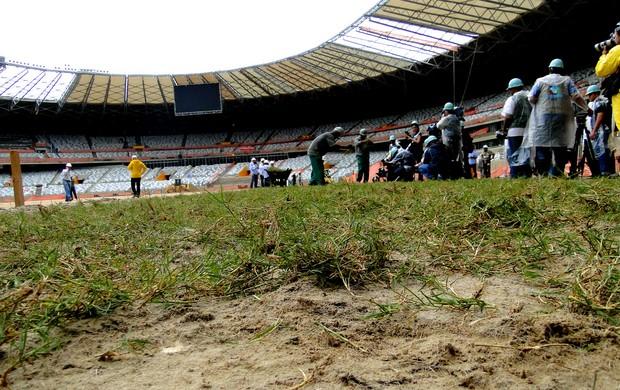 Gramado estádio mineirão (Foto: Lucas Catta Prêta / Globoesporte.com)