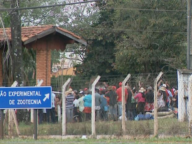 Cerca de 250 famílias ocuparam o Polo Regional de Pesquisa na manhã de sábado (16) (Foto: Reprodução/EPTV)