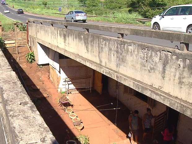 Famílias moram embaixo de viaduto em Americana (Foto: Reprodução EPTV)