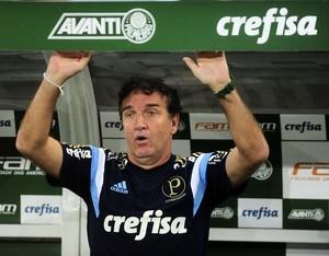Cuca Palmeiras Gremio Copa do Brasil (Foto: Marcos Ribolli)