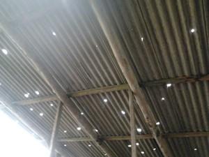Granizo trouxe prejuízos para a avicultura em Siderópolis (Foto: Rosinei da Silveira/Divulgação)