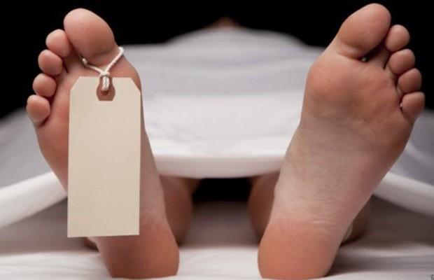 Empresas podem vender os cadáveres por US$ 2 mil a US$ 3 mil (Foto: ThinkStock)