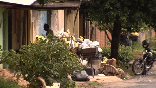 Moradora reclama de jumento morto largado em rua e falta de coleta de lixo