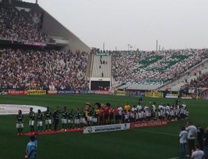 Registro Torcida Palmeiras - Arena Corinthians (Foto: Arquivo pessoal / Carlos Silva)