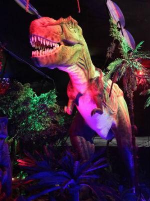 Exposição conta com animais em tamanho real (Foto: Divulgação)