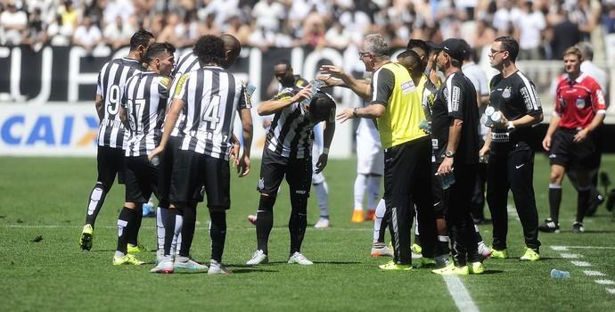 Dorival Júnior, técnico do Santos, orienta o time em jogo (Foto: Marcos Ribolli)