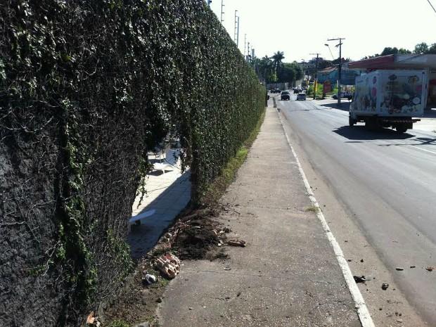Motorista trafegava no sentido bairro/Centro  (Foto: Camila Henriques/G1 AM)