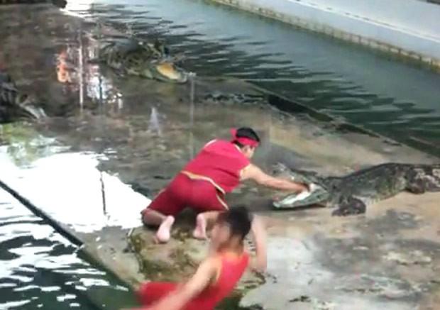 Artista levou tombo hilário durante show tenso com crocodilos (Foto: Reprodução/Imgur/ThisIsVegas1337 )