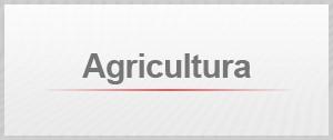 Selo Agenda Agricultura (Foto: Editoria de Arte/G1)