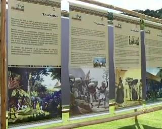 Exposição em Rio Claro (Foto: RJTV 2ª Edição)