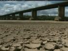 Seca afeta a vida dos agricultores de Roraima