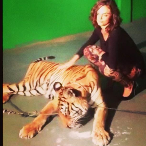 Isis Valverde posa ao lado de tigre (Foto: Instagram)