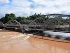 Cheia do Rio Mogi Guaçu dificulta busca por adolescente desaparecido