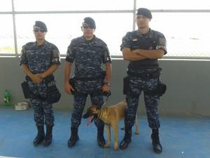 Cães são adestrados para trabalhar na segurança da população (Foto: Neidiana Oliveira/G1)