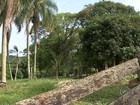 Parque fechado desde 2012 sinaliza descaso e abandono em Itapetininga