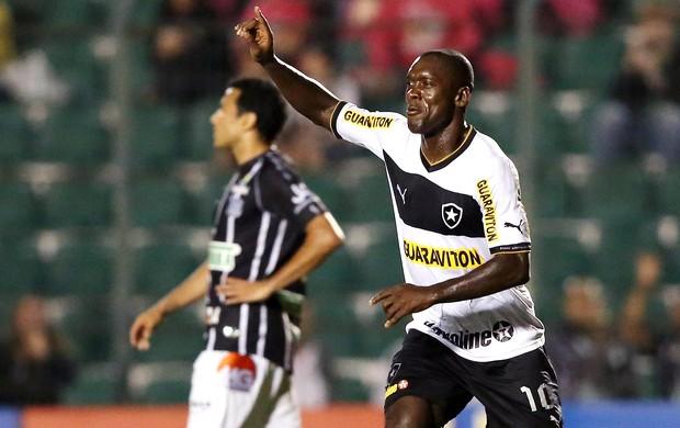 Seedorf comemora gol do Botafogo contra o Figueirense (Foto: Cristiano Andujar / Agência Estado)