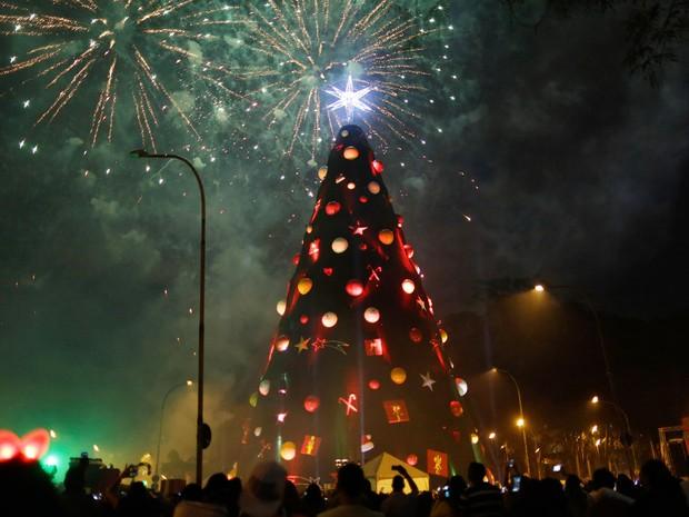 Árvore de natal do Ibirapuera é acesa (Foto: Nelson Antoine/Estadão Conteúdo)