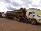 Mais de 100 metros cúbicos de madeira são apreendidos no Pará