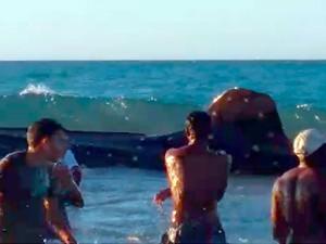 Tubarão-baleia encalhou em praia de Galinhos, no litoral Norte do RN  (Foto: Reprodução/Inter TV Cabugi)