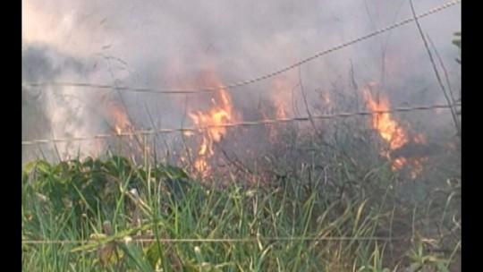 Incêndio atinge propriedade rural às margens da PA-415, próximo a Altamira
