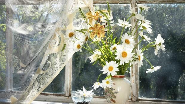 Flor, flores, margarida, cozinha, basculante (Foto: Getty Images)
