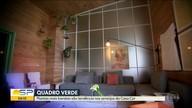 Quadro Verde visita a Casa Cor e mostra novas tendências em arranjos