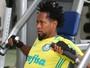 Zé Roberto não treina, e Mina inicia recuperação no Palmeiras