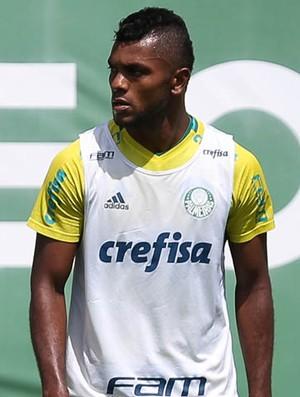 Borja Palmeiras (Foto: Fabio Menotti/Ag. Palmeiras/Divulgação)