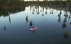 60 dias no pantanal ep1