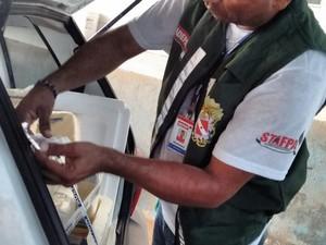 Queijo será queimado em Marabá, diz Adepará. (Foto: Divulgação/Adepará)
