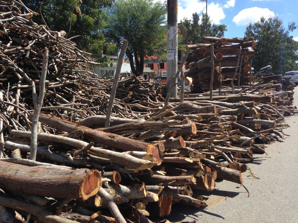 Madeira deve ser de reflorestamento autorizado (Foto: Vital Florêncio)