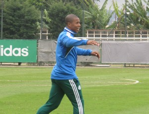 Luis Felipe Palmeiras (Foto: Marcus Vinicius Souza)