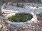 Bebedouros de animais no zoológico da UFMT viram criadouro de mosquito