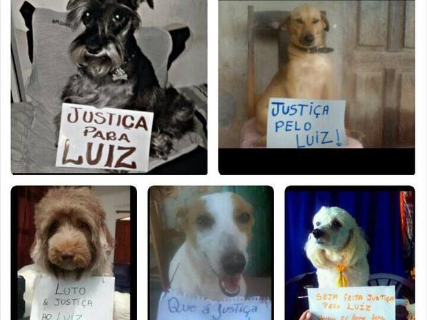 Protesto virtual pede justiça pela morte do cão 'Luiz' (Foto: Cris Nobre/Arquivo Pessoal)