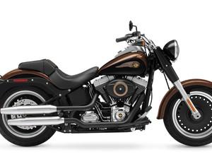Harley; 110; anos; edições; especiais; aniversário; 1200; custom; Davidson; fat; boy; lo (Foto: Divulgação)