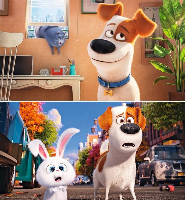 O cãozinho Max em cenas de Pets – A Vida Secreta dos Bichos: com o coelho Snowball e a gata Chloe (Foto: Guto Costa / Divulgação, Divulgação)
