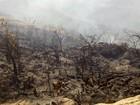 Incêndio pode afetar comunicação na região do Pico do Jabre, na Paraíba