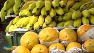 Agricultura familiar com papel importante na economia brasileira