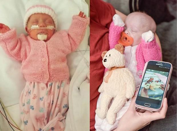 Liberada para ir para casa, a comparação com o urso está bem diferente agora (Foto: Reprodução)