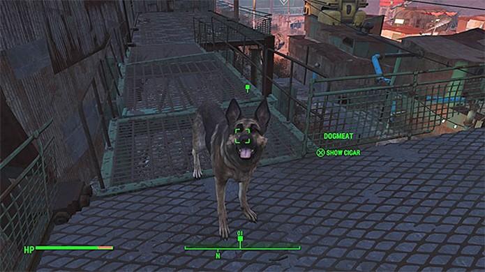 User seu fiel companheiro Dogmeat para rastrear Kelloggs através de seus charutos em Fallout 4 (Foto: Reprodução/Games Pressure)